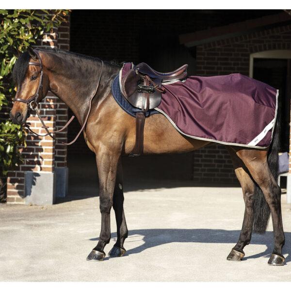 Horseware Amigo Ripstop Comp regndækken.